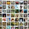 CIFAR-10 Object recognition dataset (car, plane, bird, cat...) (60K Images)